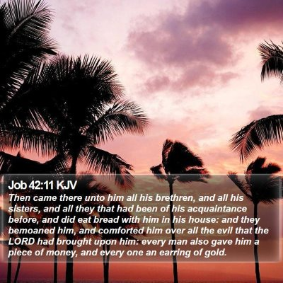 Job 42:11 KJV Bible Verse Image