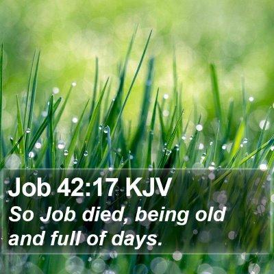 Job 42:17 KJV Bible Verse Image