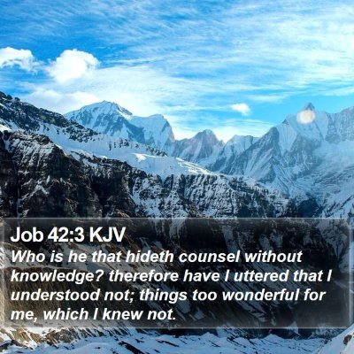 Job 42:3 KJV Bible Verse Image