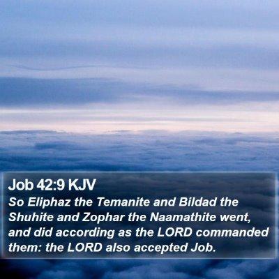 Job 42:9 KJV Bible Verse Image