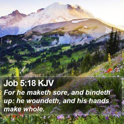 Job 5:18 KJV Bible Verse Image