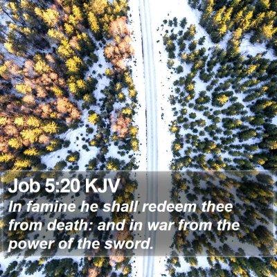 Job 5:20 KJV Bible Verse Image