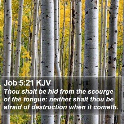 Job 5:21 KJV Bible Verse Image