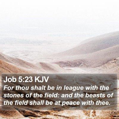 Job 5:23 KJV Bible Verse Image