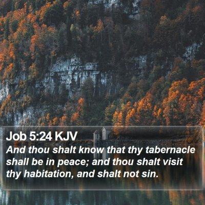 Job 5:24 KJV Bible Verse Image