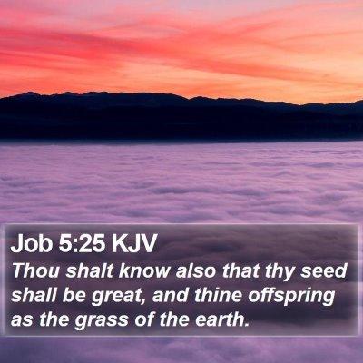 Job 5:25 KJV Bible Verse Image