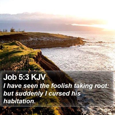 Job 5:3 KJV Bible Verse Image