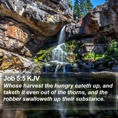 Job 5:5 KJV Bible Verse Image