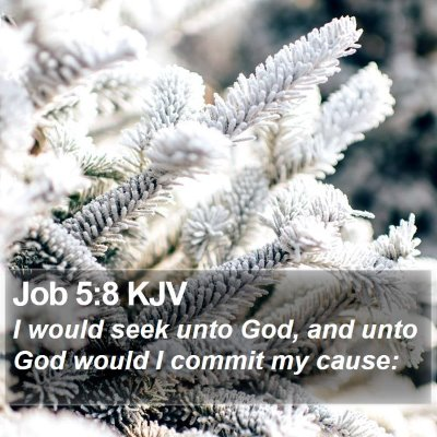 Job 5:8 KJV Bible Verse Image