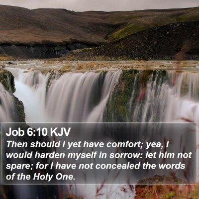 Job 6:10 KJV Bible Verse Image