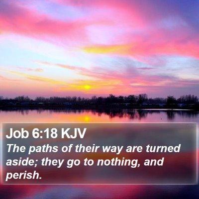 Job 6:18 KJV Bible Verse Image