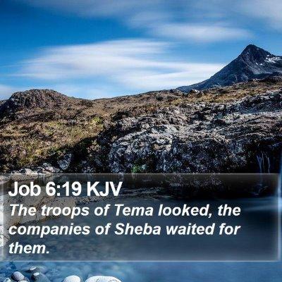 Job 6:19 KJV Bible Verse Image