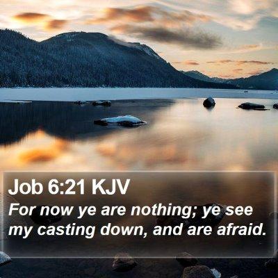Job 6:21 KJV Bible Verse Image