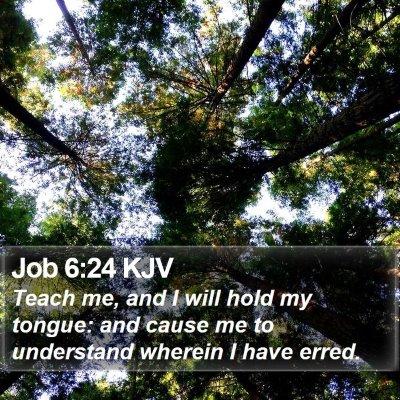 Job 6:24 KJV Bible Verse Image