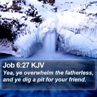 Job 6:27 KJV Bible Verse Image