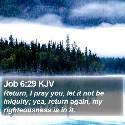 Job 6:29 KJV Bible Verse Image