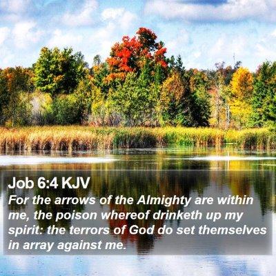 Job 6:4 KJV Bible Verse Image