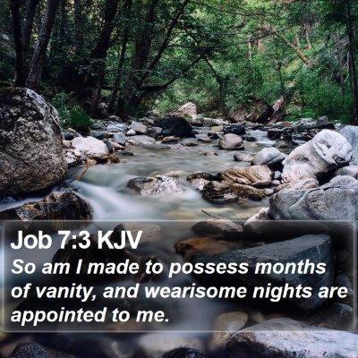 Job 7:3 KJV Bible Verse Image