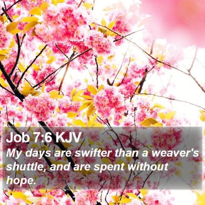 Job 7:6 KJV Bible Verse Image