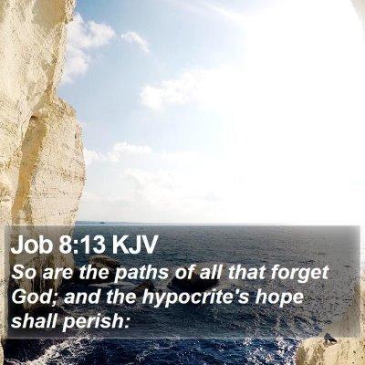 Job 8:13 KJV Bible Verse Image