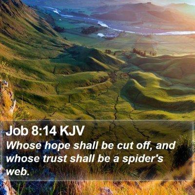 Job 8:14 KJV Bible Verse Image