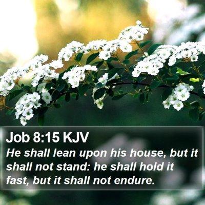 Job 8:15 KJV Bible Verse Image