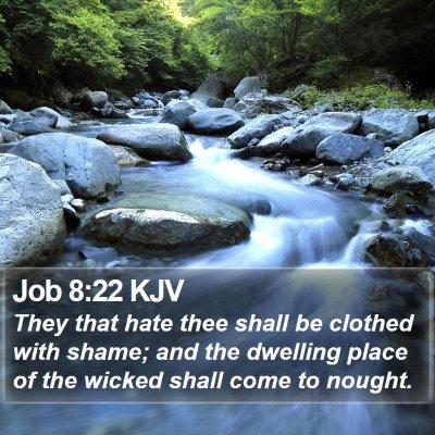 Job 8:22 KJV Bible Verse Image