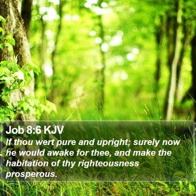 Job 8:6 KJV Bible Verse Image