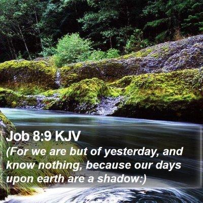 Job 8:9 KJV Bible Verse Image