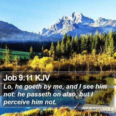 Job 9:11 KJV Bible Verse Image