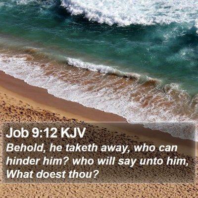 Job 9:12 KJV Bible Verse Image