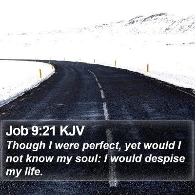 Job 9:21 KJV Bible Verse Image