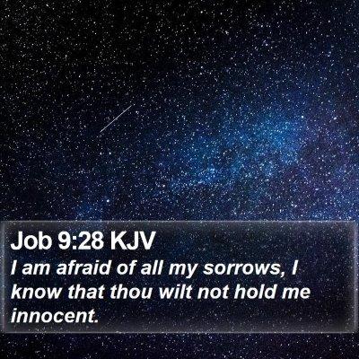Job 9:28 KJV Bible Verse Image