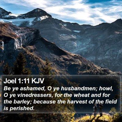 Joel 1:11 KJV Bible Verse Image