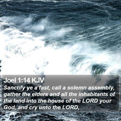Joel 1:14 KJV Bible Verse Image