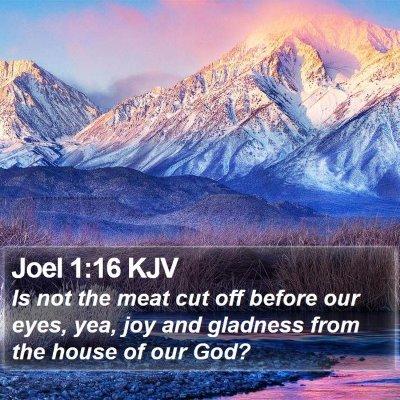 Joel 1:16 KJV Bible Verse Image