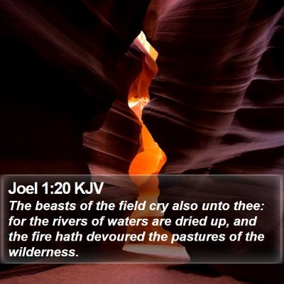 Joel 1:20 KJV Bible Verse Image