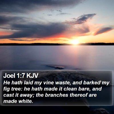 Joel 1:7 KJV Bible Verse Image