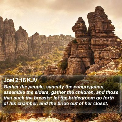 Joel 2:16 KJV Bible Verse Image
