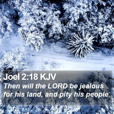Joel 2:18 KJV Bible Verse Image