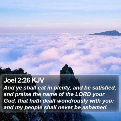 Joel 2:26 KJV Bible Verse Image