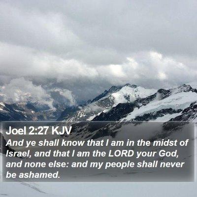 Joel 2:27 KJV Bible Verse Image