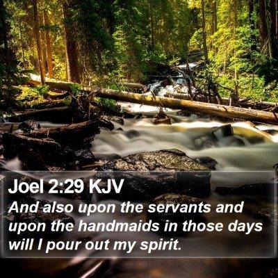 Joel 2:29 KJV Bible Verse Image