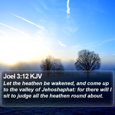 Joel 3:12 KJV Bible Verse Image