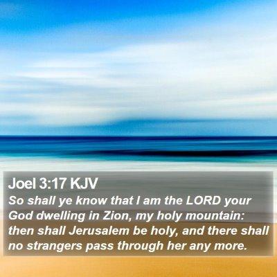 Joel 3:17 KJV Bible Verse Image