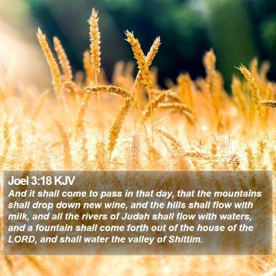 Joel 3:18 KJV Bible Verse Image