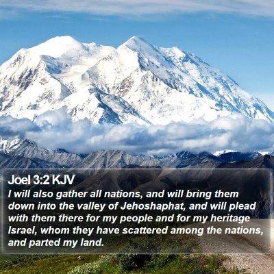 Joel 3:2 KJV Bible Verse Image