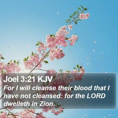 Joel 3:21 KJV Bible Verse Image
