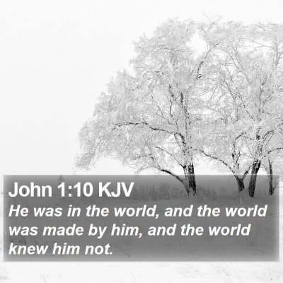 John 1:10 KJV Bible Verse Image