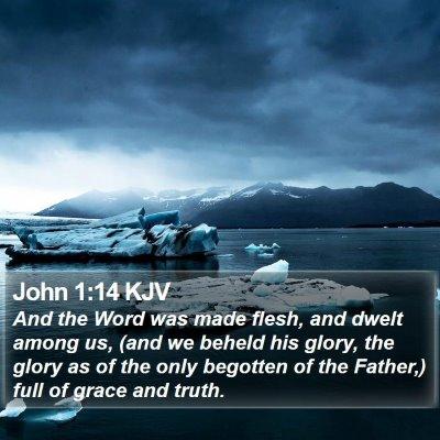 John 1:14 KJV Bible Verse Image
